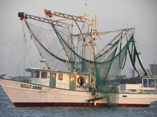 Kelly Anne Shrimp Boat Gulf Rebel Charter Fleet