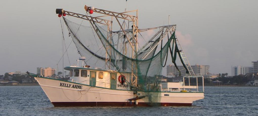 Shrimp Boat - Shrimping Charters Orange Beach